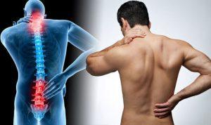 Основные заболевания позвоночника
